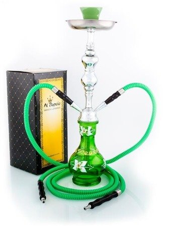 SINGLE DAISY GREEN  2Hoses Hookah Shisha Water Pipe Alpapcio 53